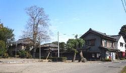 丸山酒造および丸山酒店